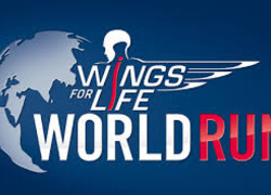 Logo van de Wings for Life world run