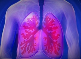 Normal_normal_lichaam_copd_long_longziekte