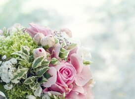 Normal_bouquet-2138837_640